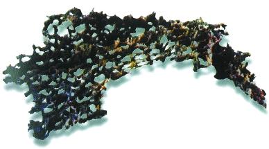 丝绸最早的用途是什么?5000多年前中国先民已育蚕制丝