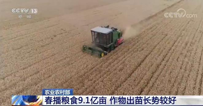 农村农业部:5月份农业农村经济运行向好态势持续巩固