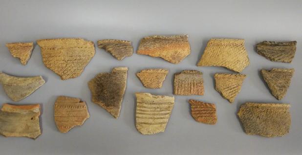 三星堆周边发现联合遗址 涵盖近5000年不间断区域发展史