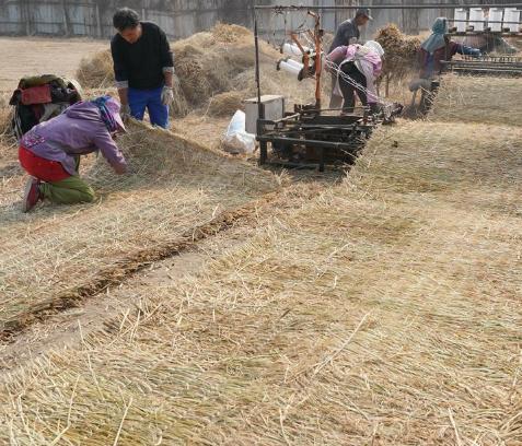 滦南:稻草编织助农增收 年销售收入近2000万元