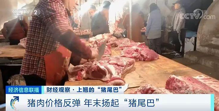 """猪肉价格反弹 年末扬起""""猪尾巴"""""""