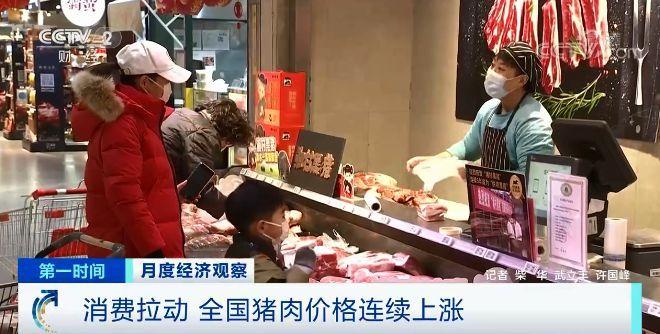 猪肉价格反弹 生猪期货下跌