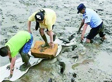 男孩抓螃蟹被困淤泥 危急关头辅警挺身相救