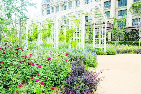 """石家庄:家门口的""""精致后花园""""让市民享受舒适便利"""